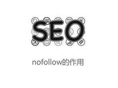 【网站seo狼雨】为什么SEO优化效果不明显